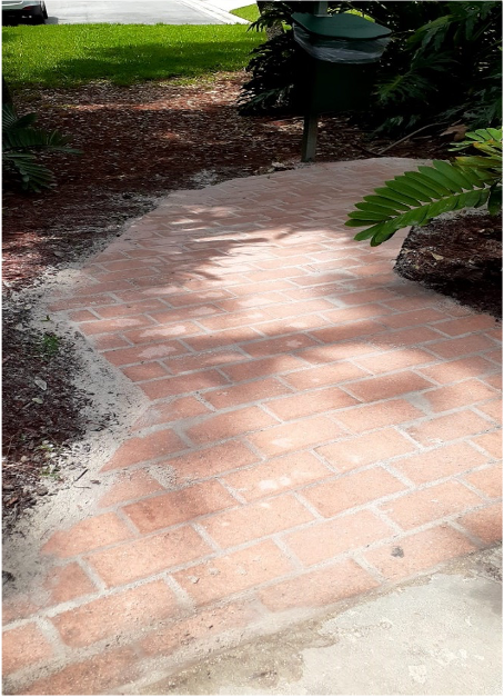 Sidewalk completed at doggy station